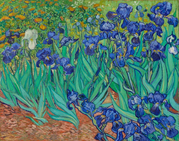 Irises (1889 )- Vincent Van Gogh